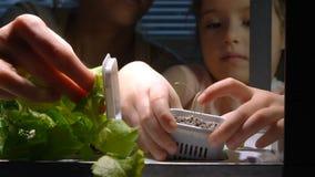 La ragazza sveglia del bambino aiuta sua madre a preoccuparsi per le piante Movimento lento archivi video