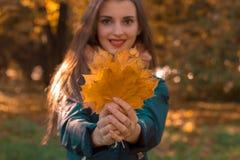 La ragazza sveglia sorride ed allunga il primo piano di andata delle foglie Immagini Stock Libere da Diritti