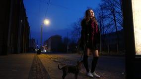 La ragazza teenager con un piccolo cane su una via di notte gode del tempo caldo della molla in anticipo archivi video