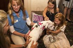 La ragazza tiene il cane dal salvataggio dell'animale domestico Fotografie Stock Libere da Diritti