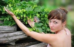 La ragazza tiene il luppolo verde Fotografia Stock