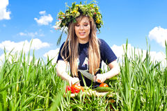 La ragazza in un campo dei fiori ha tagliato le verdure Fotografie Stock Libere da Diritti