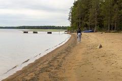 La ragazza va sulla costa della riva del lago in taiga Immagine Stock