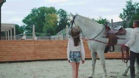 La ragazza viene al cavallo bianco sull'area 4K archivi video