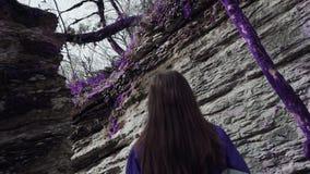 La ragazza viola della foresta di favola sta camminando lentamente in un labirinto della montagna fra gli alberi porpora Fantasia video d archivio