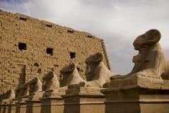 La RAM de piedra dirigió esculturas de la esfinge en el templo de la  Imágenes de archivo libres de regalías