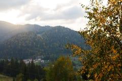 La rama de árbol de abedul con verde y amarillo se va con puesta del sol en las montañas en fondo Concepto del otoño Foto de archivo