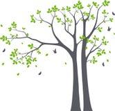 La rama de árbol hermosa con los pájaros siluetea el fondo para la etiqueta engomada del papel pintado ilustración del vector