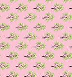 La rama de la primavera con verde fresco se va en un modelo inconsútil del vector del fondo rosado Foto de archivo libre de regalías