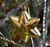 La rama del árbol de navidad se adorna con la estrella del oro Imagen de archivo libre de regalías