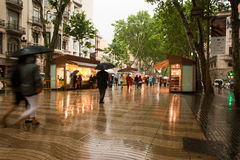 La Rambla Barcelona in rain Royalty Free Stock Photography