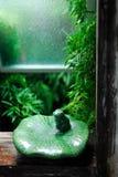 La rana aspettante Fotografie Stock