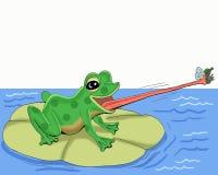 La rana coge la mosca con su tonguecartoon foto de archivo