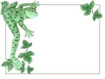 La rana di albero verde appende sul confine Fotografie Stock