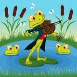 La rana gioca il violino Fotografia Stock