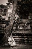 La rana pescatrice si leva in piedi sulla parete del fossato al tempiale di Angkor Wat Fotografia Stock