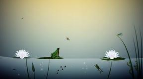 La rana vive en la charca, la mariposa de la caza de la rana en las hojas del lirio, escena de la charca, libre illustration