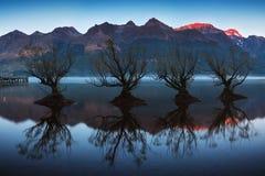 La rangée célèbre de saule dans Glenorchy, île du sud, Nouvelle-Zélande Situé près de Queenstown, Glenorchy est le Nouvelle-Zélan photographie stock libre de droits