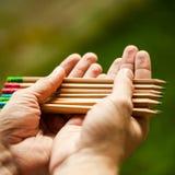 La rangée de couleur crayonne dans des mains sur le buisson vert Image stock