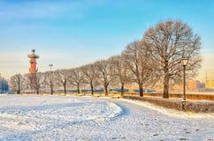 La rangée des arbres sur la place d'anciennes actions de Birzhevaya Photographie stock