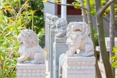 La rangée du lion en pierre féroce schéma on faisant face à l'appareil-photo Images libres de droits