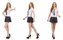 La rappresentazione femminile del giovane studente isolata su bianco Fotografia Stock
