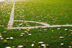 La raya blanca está en el campo verde Foto de archivo