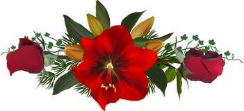 La rayure avec les roses rouges et le lis fleurit sur le blanc Photos libres de droits