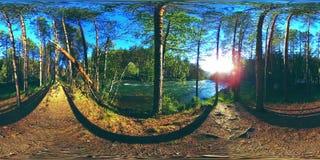 La realtà virtuale di UHD 4K 360 VR di un fiume entra sopra le rocce nel bello paesaggio della foresta della montagna archivi video