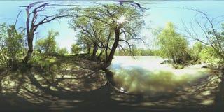 La realtà virtuale di UHD 4K 360 VR di un fiume entra sopra le rocce nel bello paesaggio della foresta della montagna stock footage