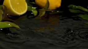 La rebanada del limón de la fruta fresca cae en el vídeo de la cámara lenta de la superficie del agua
