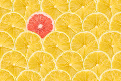 La rebanada del pomelo se destaca de la muchedumbre Imagen de archivo libre de regalías
