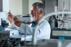 La recherche de mise en oeuvre supérieure de professeur/docteur de chimie expérimente Images stock