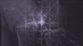 la recherche scientifique médicale du rayon X 4k, grand-données d'Animal-CT d'os de santé de corps balayent