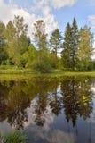 La reflexión costera de los árboles en la superficie lisa del Imagen de archivo