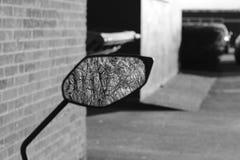 La reflexión de árboles en un espejo de ala de una moto Fotos de archivo libres de regalías