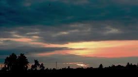La reflexión de la puesta del sol con las nubes y las sombras de árboles y de pájaros están volando en el cielo almacen de video