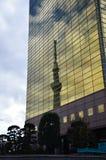 La reflexión de Tokio SkyTree Imagenes de archivo