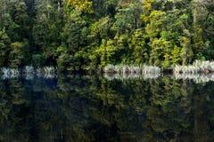 La reflexión del lago Matheson Fotos de archivo libres de regalías