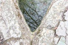La reflexión en el agua Fotografía de archivo libre de regalías