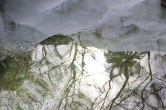 La reflexión en el agua Fotografía de archivo