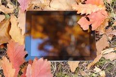 La reflexión en la tableta que miente en las hojas de otoño Imagen de archivo