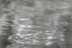 La reflexión mezclada de la luz del sol y la vegetación en el agua emergen en negro y blanco Foto de archivo libre de regalías