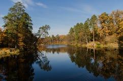 La reflexión perfecta del agua del otoño Imagen de archivo
