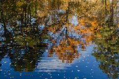 La reflexión perfecta del otoño Foto de archivo libre de regalías