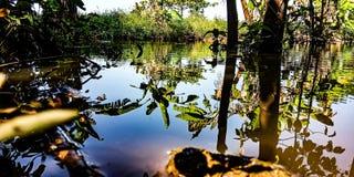La reflexi?n del agua imagenes de archivo