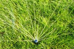 La regadera del agua est? regando el campo de hierba verde Agua de colada del c?sped verde Paisaje Fondo mojado de la hierba fotos de archivo