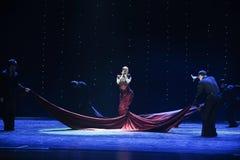 La regina del ballo del mondo dell'Austria di memorie- dell'India-India Fotografia Stock Libera da Diritti