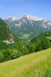 La regione delle alpi del Nord di Limetone in Austria Fotografie Stock