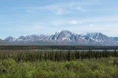 La regione selvaggia dell'Alaska Fotografia Stock Libera da Diritti